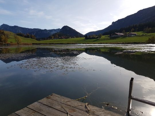 Froschsee (Ruhpolding) angeln